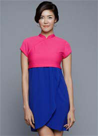 Queen Bee Ada Mandarin Collar Nursing Dress by Dote Nursingwear