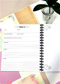 Queen Bee Pregnancy Journal by Write to Me