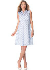 Queen Bee Gingham Cotton Maternity Dress in Blue Check by Seraphine