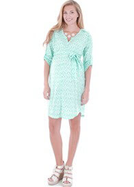 Queen Bee Hudson Maternity Dress in Mint Ikat by Everly Grey