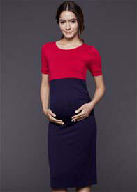 Queen Bee Mia Fuchsia/Navy Maternity/Nursing Dress by Dote Nursingwear