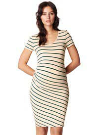 Queen Bee Lotus Maternity Dress in Green Stripes by Noppies